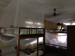 New bunks and mosquito nets at the Garden